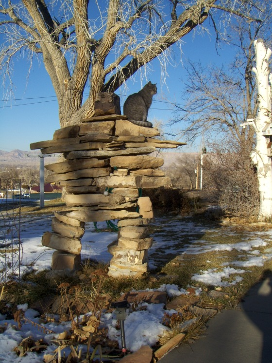 walter on the inukthing's shoulder
