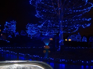 blue firehydrant lites