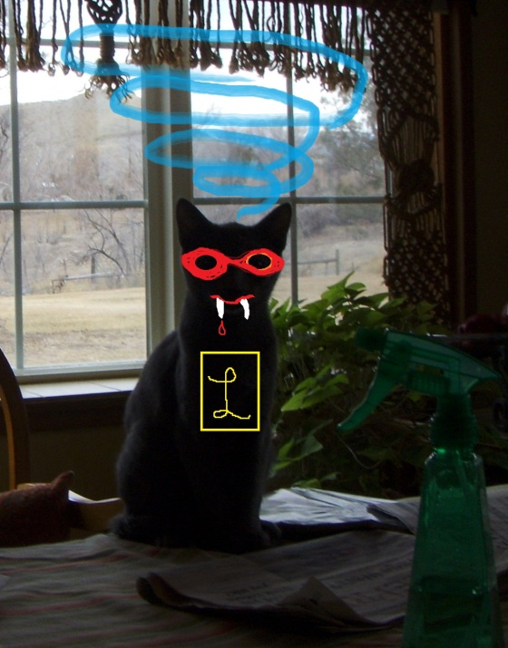 whackocat 2