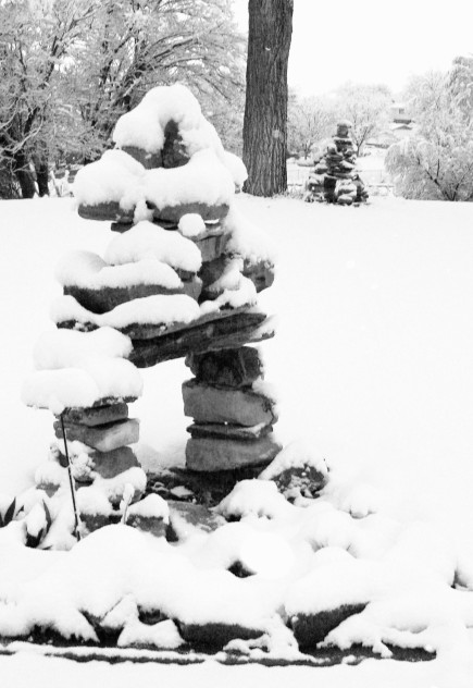 snow inux