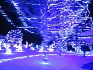 bleuwhirlwind